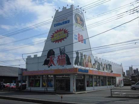 『動物が好き!』その気持ちが一番大切Coo&RIKUの店舗販売スタッフ